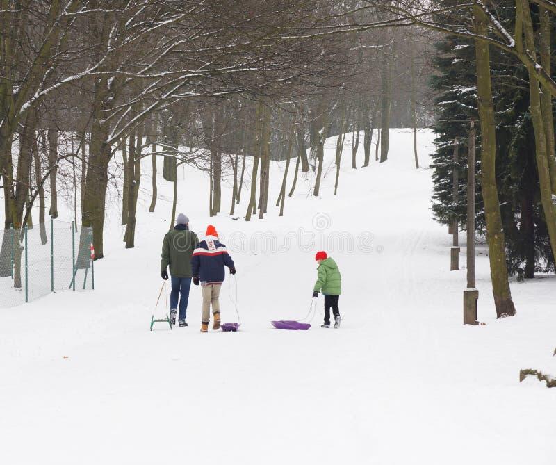 Folk som använder en sled i vintern fotografering för bildbyråer