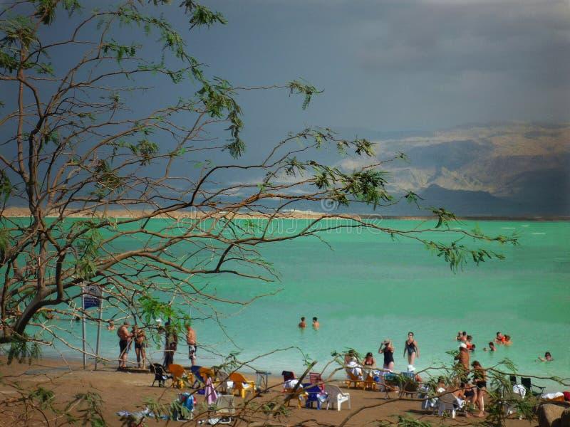 Folk som badar på stranden royaltyfri bild