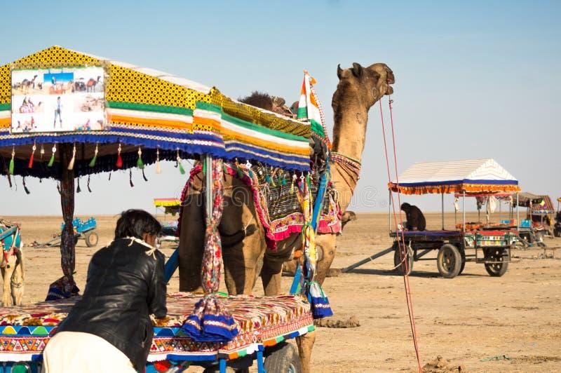 Folk som får på färgrika kamelvagnar, som andra vagnar går i avståndet royaltyfri foto