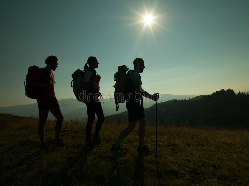Folk som fotvandrar på berget arkivbild