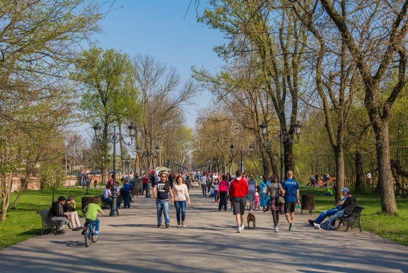 Folk som går i en parkera på en solig dag fotografering för bildbyråer