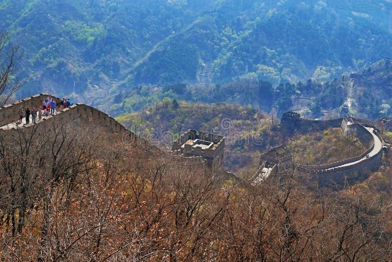 Folk som går på det Mutianyu avsnittet av den stora väggen av Kina som omges av grön och gul vegetation under a arkivbilder
