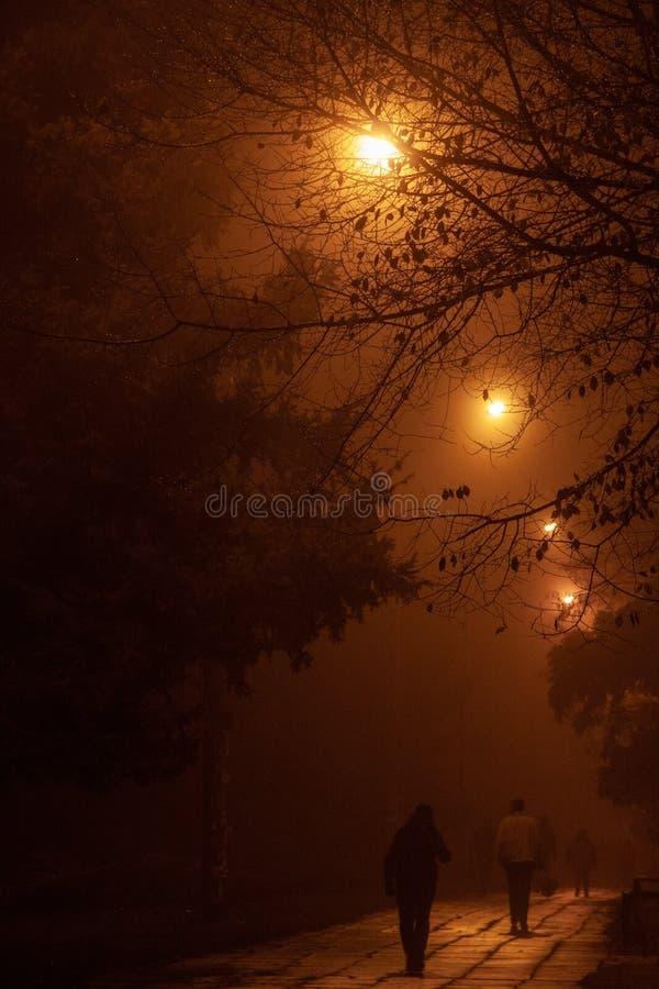 Folk som g?r p? natten i dimman royaltyfri foto