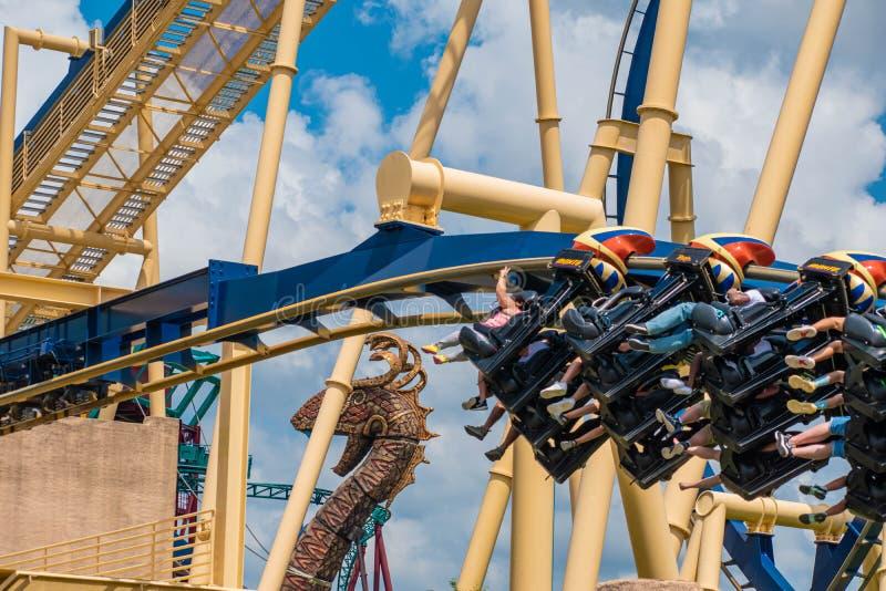 Folk som har den roliga fantastiska Montu rollercoasteren på Busch trädgårdar 34 royaltyfria bilder