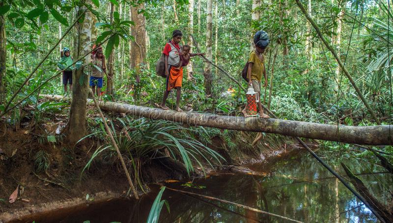 Folk som korsar floden på bron för trädstam, stam av Korowai folk arkivbilder