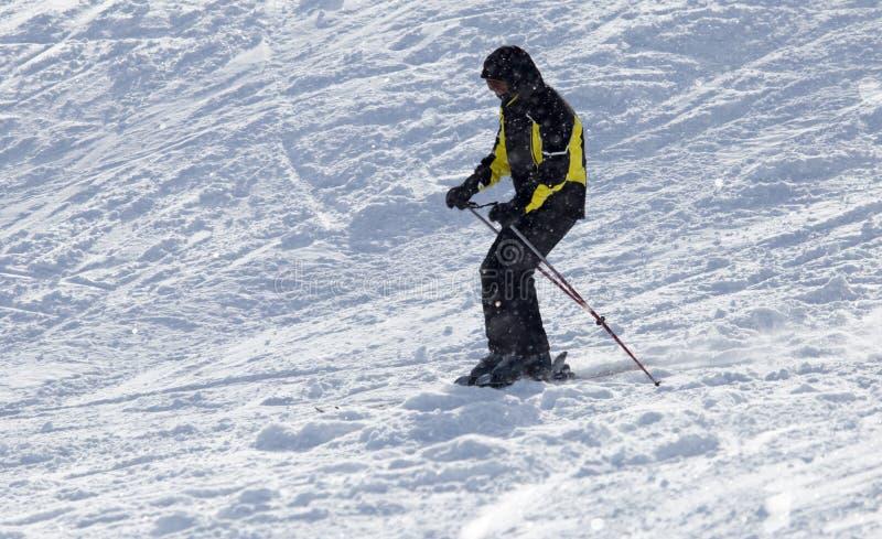 Download Folk som skidar i vintern fotografering för bildbyråer. Bild av folk - 106831413