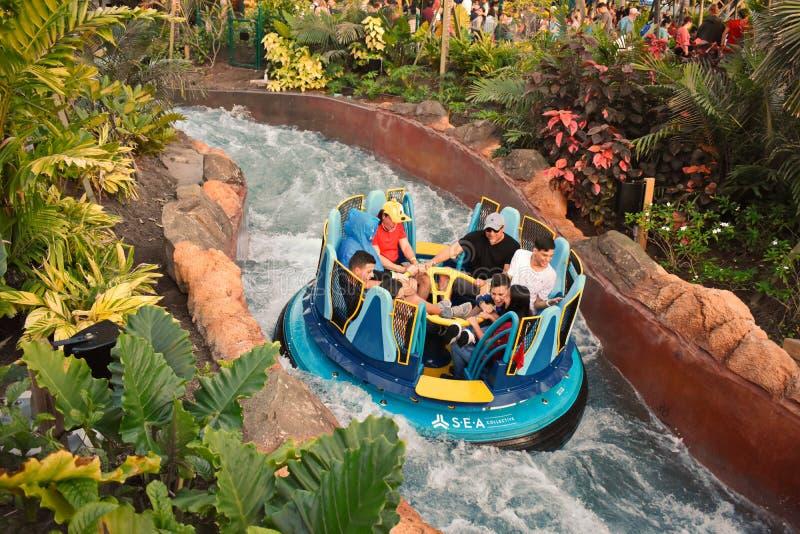 Folk som tycker om ritt i oändlighetsnedgångar på Seaworld Marine Theme Park royaltyfri bild