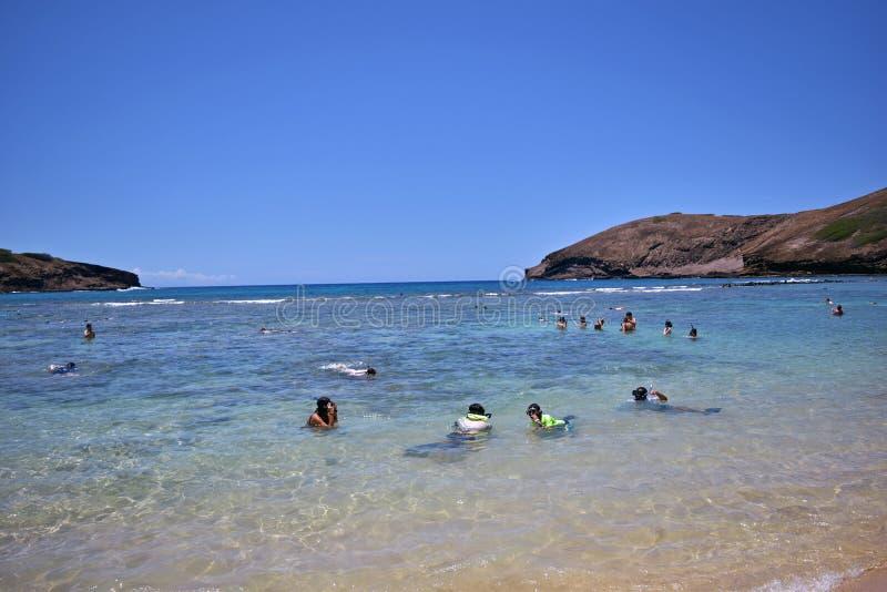 Folk som tycker om strandaktiviteter och snorkling i den Hanauma fjärden, Hawaii royaltyfri bild