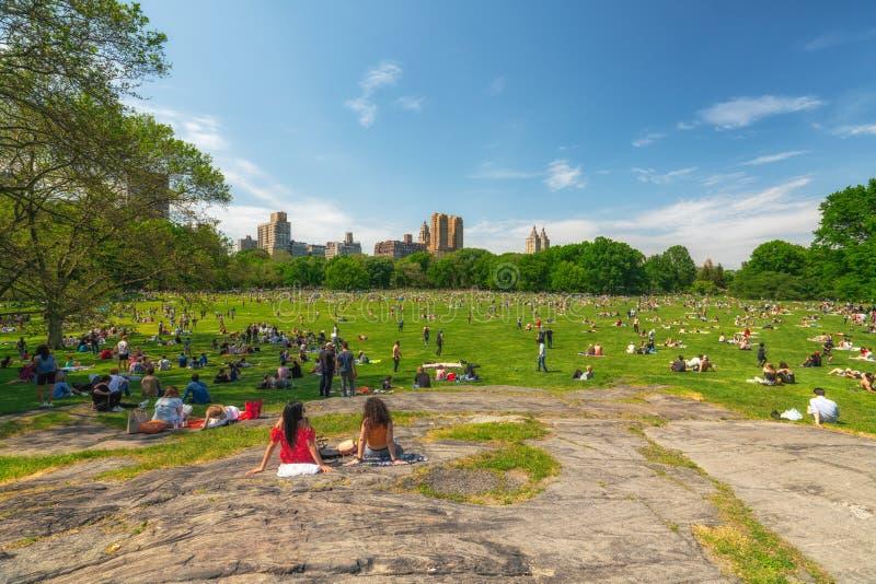Folk som vilar i Central Park, härliga Sunny Day i New York City arkivfoto