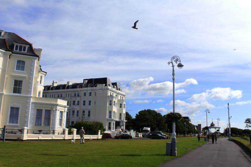 Folkestone betesmarkerna Kent Great Britain royaltyfria foton