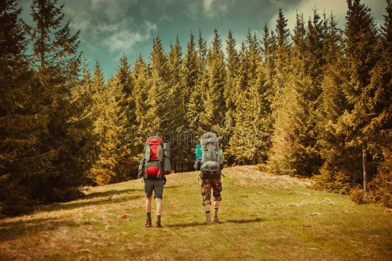 Folket fotvandrar i Carpathian berg fotografering för bildbyråer
