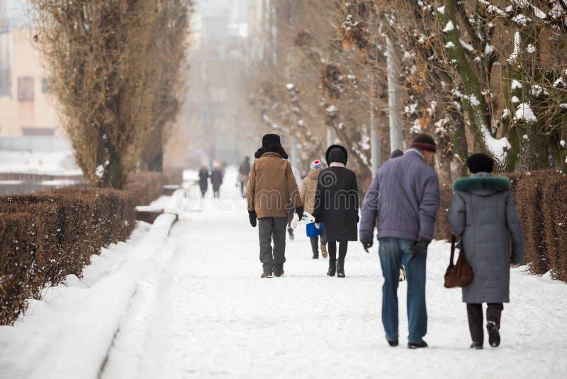 Folket går i en stad parkerar vinter arkivfoton