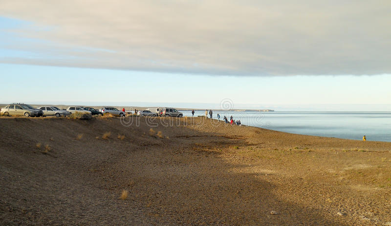 Folket håller ögonen på valen på El Doradillo att sätta på land nära den Puerto Madryn fjärden royaltyfria foton