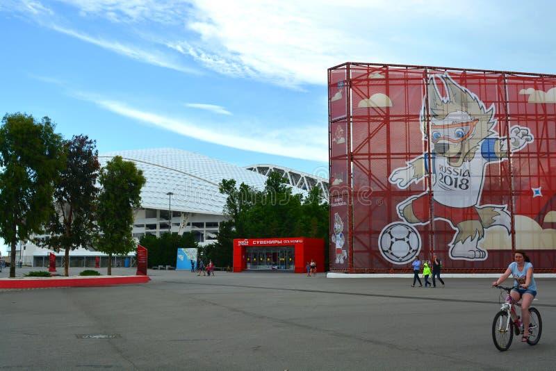 Folket i olympiska Sochi parkerar royaltyfria bilder