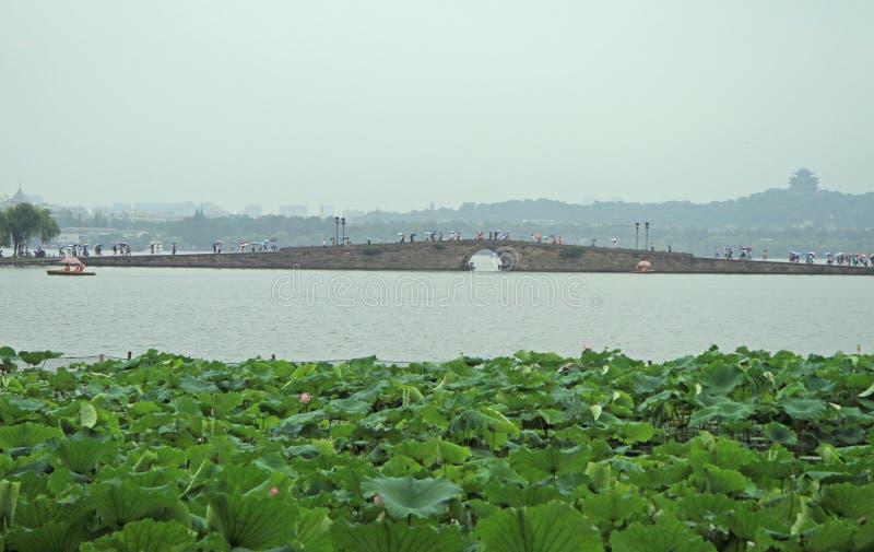 Folket korsar den västra sjön i Hangzhou vid bron royaltyfri fotografi