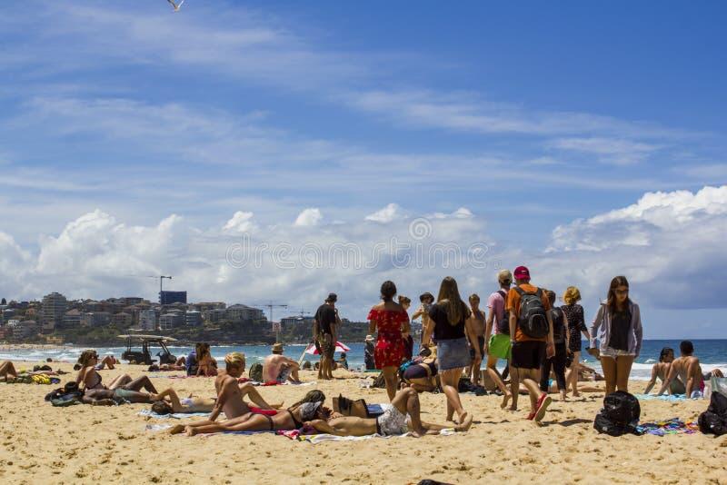 Folket solbadar på stranden arkivfoton