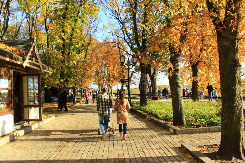 Folket som går i höststad, parkerar med stora träd koppla av för familj arkivfoton