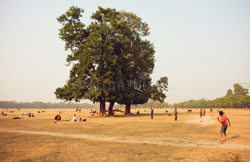 Folket som spelar syrsan och har picknickar i stad, parkerar i Kolkata royaltyfria foton