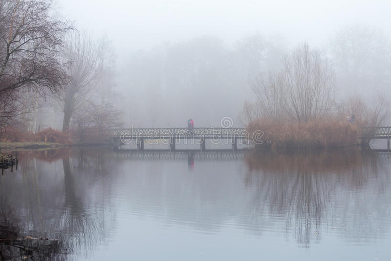 Folket tar en promenad i skogen i dimmigt dimmigt väder som går på en träbro över ett damm royaltyfri fotografi