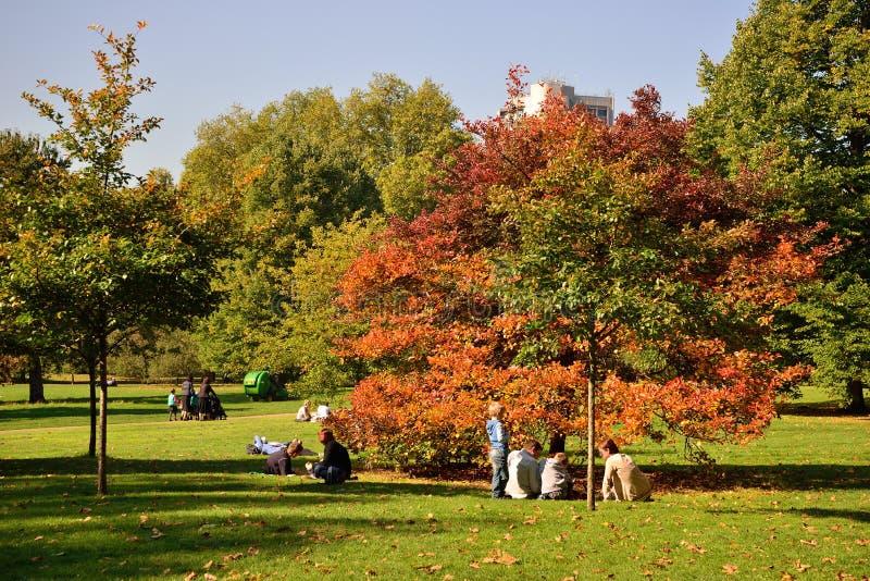 Folket tar en vila i London gräsplan parkerar arkivfoto