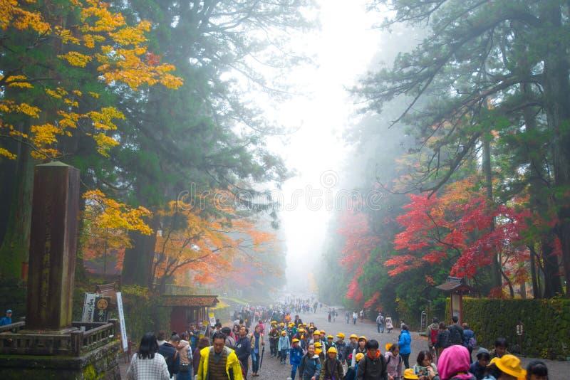 Folket turnerar i höstsäsong och dimma av den Toshogu relikskrin royaltyfria foton
