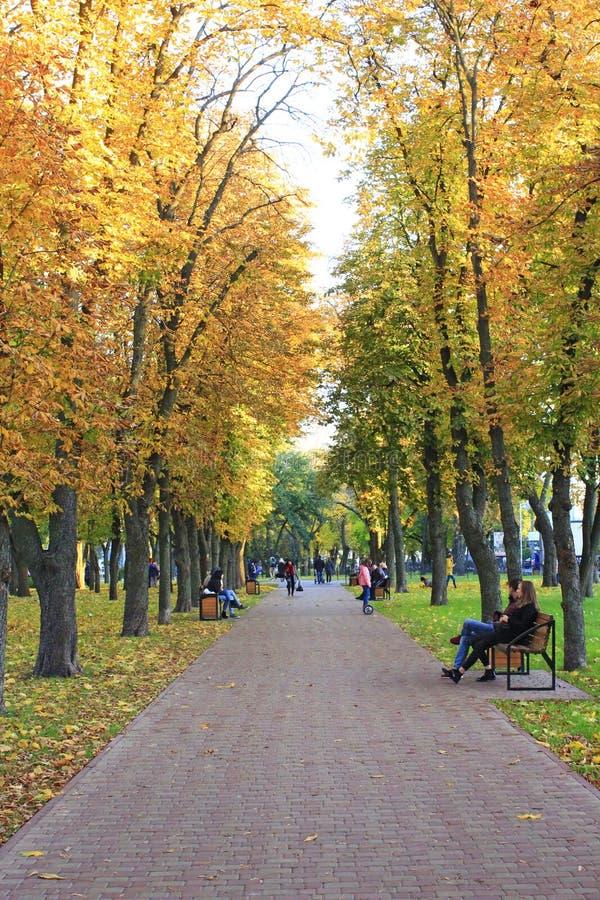 Folket vilar i parkerar Säsong av hösten med gul lövverk på träd arkivbild