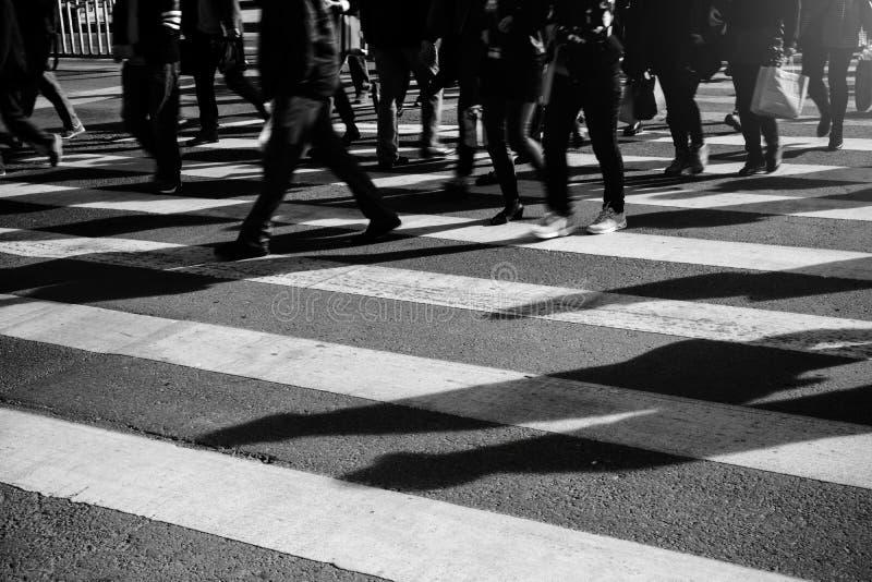Folkmassa av folk som går på zebramarkering gata royaltyfri foto