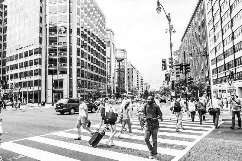 Folkmassa av folk som korsar en stadsgata på övergångsstället royaltyfri bild