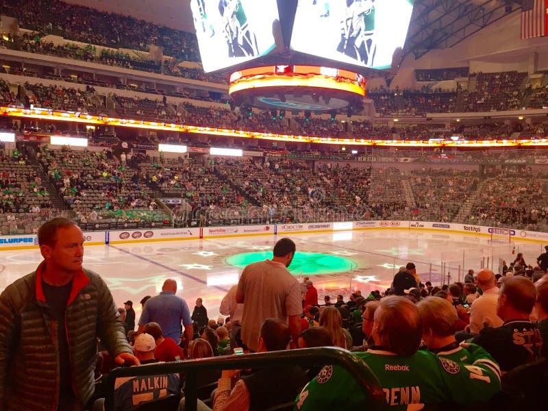 Folkmassa för hockeylek arkivbilder