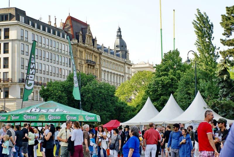Folla ad un giardino della birra a Vienna immagine stock libera da diritti