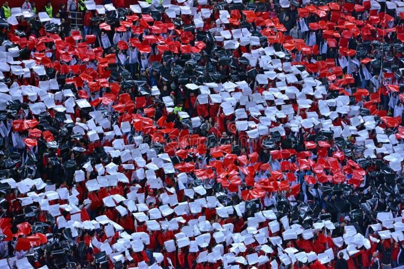 Folla dei fan di calcio nello stadio immagini stock libere da diritti