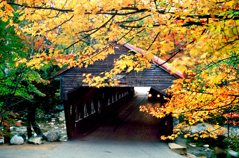 Follaje de caída de Nueva Inglaterra fotos de archivo