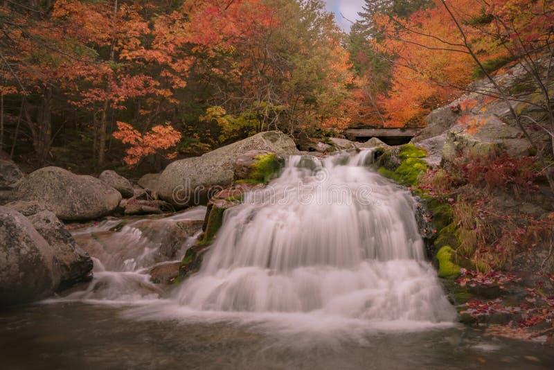 Follaje de Nueva Inglaterra con la cascada imagen de archivo libre de regalías