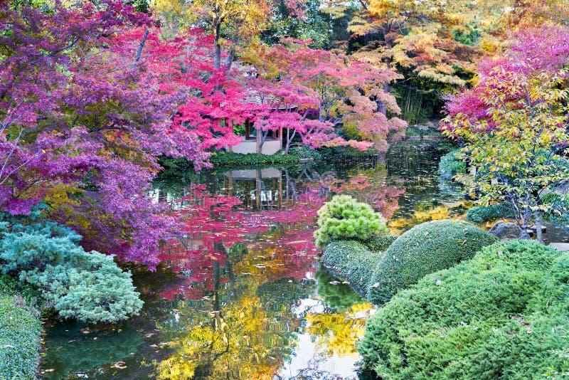 Follaje de oto o adentro en los jardines japoneses foto de archivo imagen de tejas jardines - Fotos jardines japoneses ...