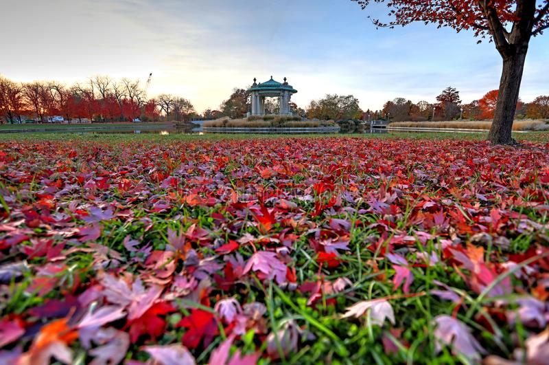Follaje de otoño alrededor del estrado de la orquesta de Forest Park en St. Louis, Missouri imagen de archivo