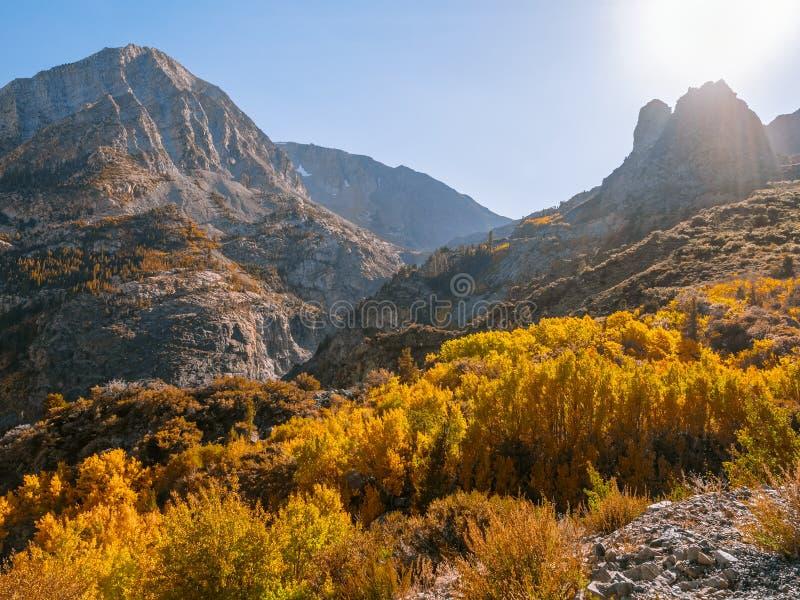 Follaje de otoño en el lado oriental del parque nacional de Yosemite fotos de archivo libres de regalías