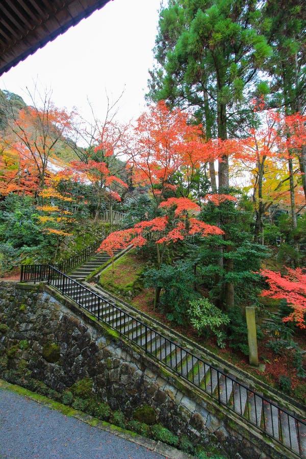 Follaje de otoño en el templo de Eikando (Zenrin-ji), Sakyo-ku, Kyoto, Japón foto de archivo