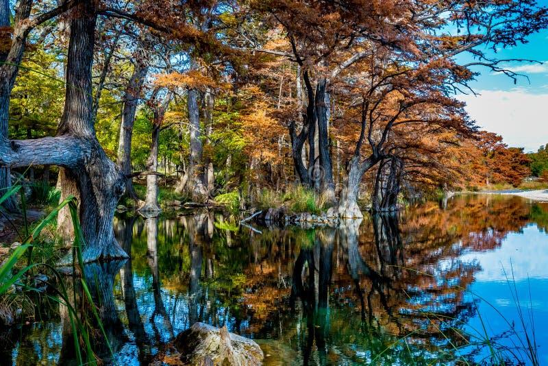 Follaje de otoño en Garner State Park, Tejas imagenes de archivo