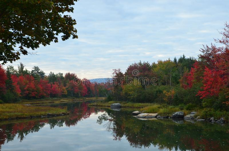 Follaje de otoño a lo largo de la costa, Maine foto de archivo libre de regalías