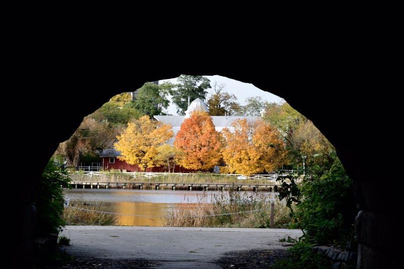 Follaje de otoño a través de Grant Memorial Archway fotografía de archivo