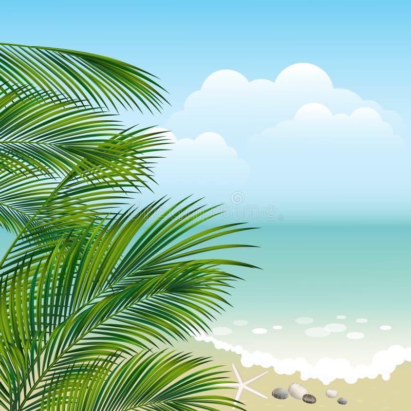 Follaje del mar y de la palma foto de archivo