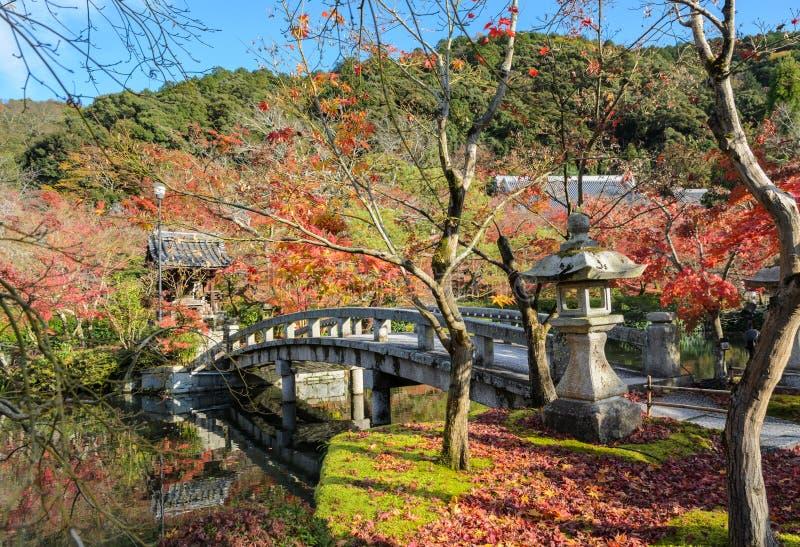Follaje del otoño en Eikando o templo de Zenrin-ji en Kyoto, Japón foto de archivo libre de regalías