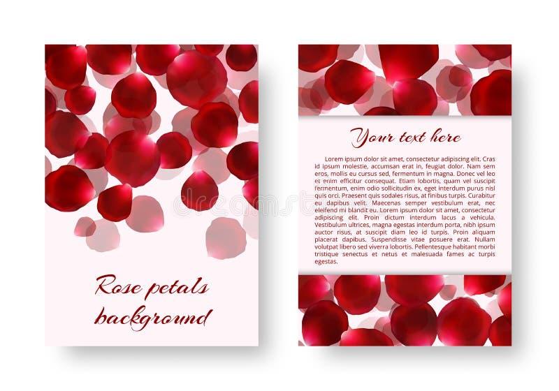 Folleto con los pétalos color de rosa ilustración del vector