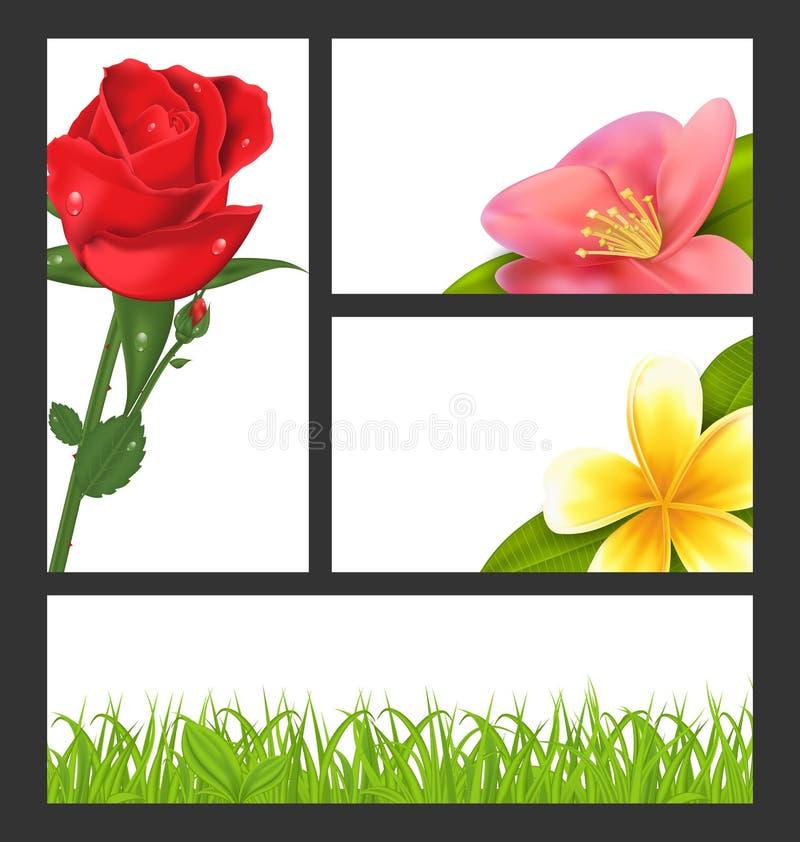 Folleto de la invitación con las flores hermosas libre illustration