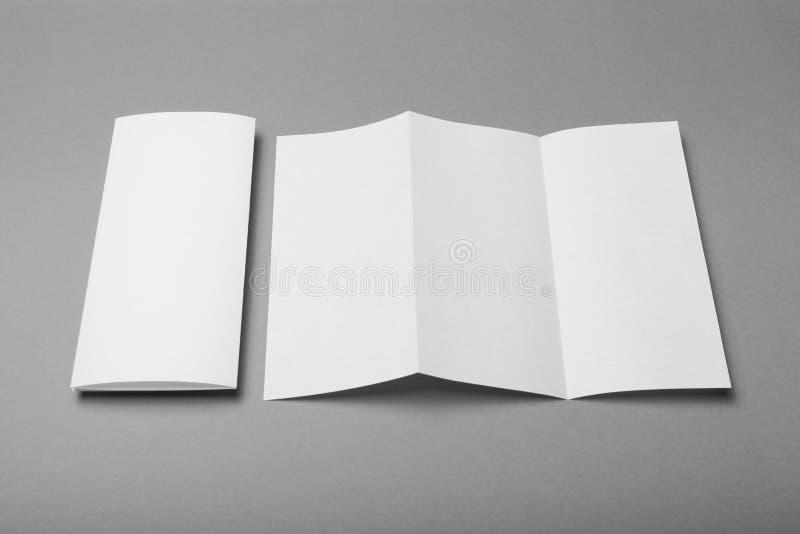 Folleto triple del aviador del prospecto vac?o blanco DL del doblez, maqueta fotos de archivo libres de regalías