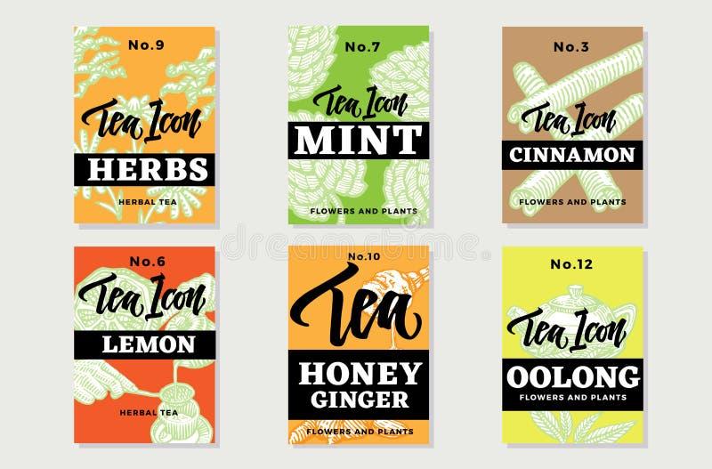 Folletos sanos dibujados mano del té stock de ilustración