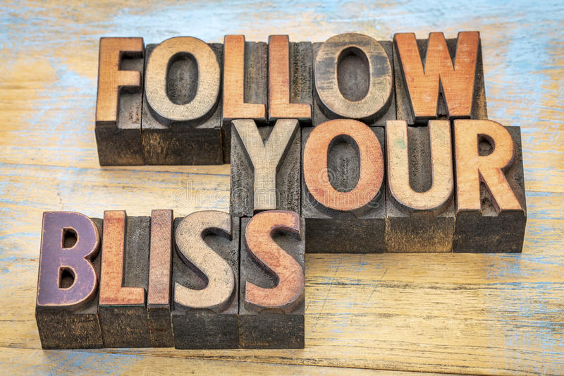 Follow your bliss in wood type. Follow your bliss - inspirational advice in vintage letterpress wood type printing blocks stained by color inks stock images
