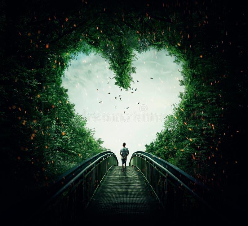 Follow your heart. Boy walking on a bridge through the heart shape woods, following the light. Follow your heart concept