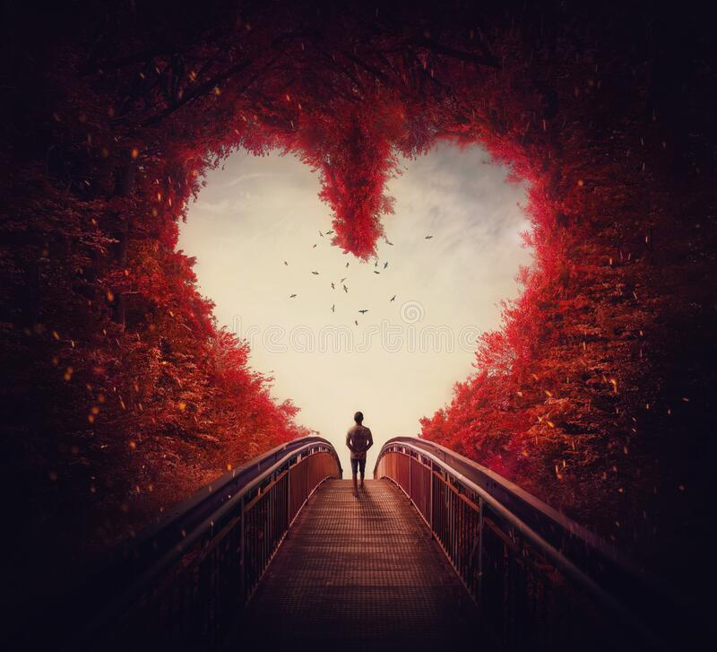 Free Follow Your Heart Concept. A Lone Person Lost In The Autumn Forest, Found The Way Out Of The Woods, As Walks A Path Through The Royalty Free Stock Photos - 199044268