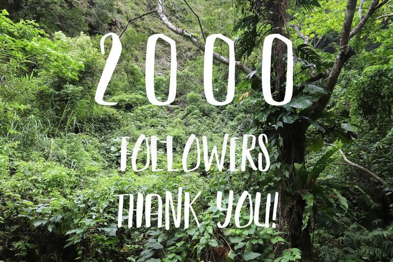 2000 followers royalty free stock photography